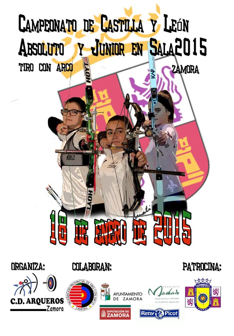 Cartel Campeonato Castilla y León Sala 2015